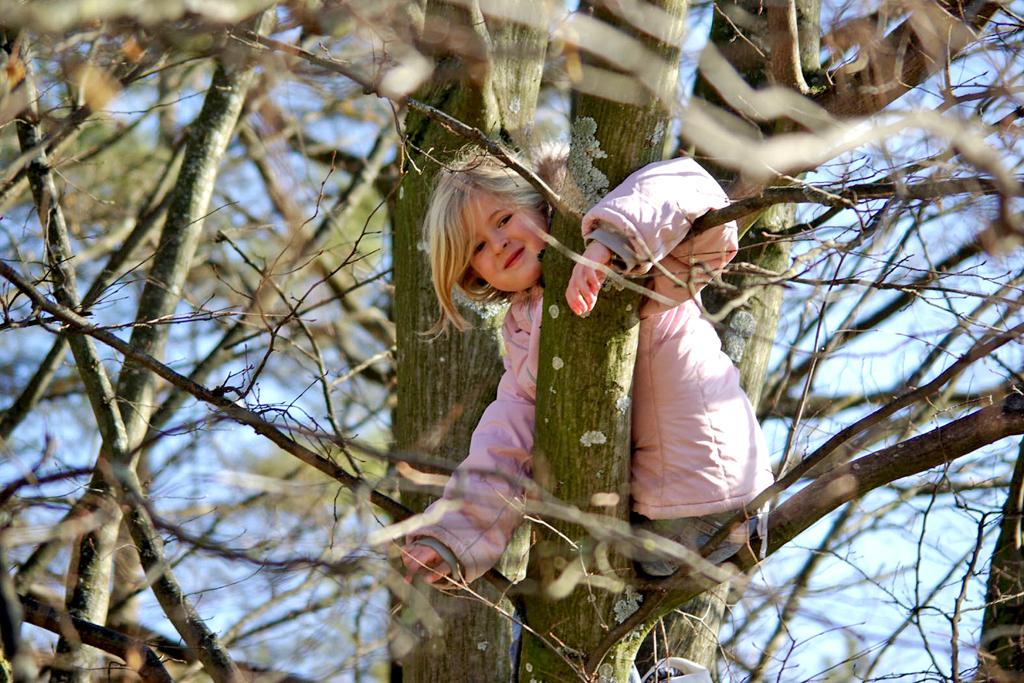 """Das Deutsche Kinderhilfswerk hat die """"Resolution für die Schaffung von Naturerfahrungsräumen in der Stadt"""" unterzeichnet."""