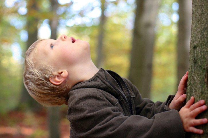 Durch die Stiftung Deutsches Kinderhilfswerk können wir noch dauerhafter und nachhaltiger auf ein kinderfreundliches Deutschland hinarbeiten. Informieren Sie sich!