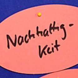 Die Bildungsangebote des Deutschen Kinderhilfswerke richten saich an alle, die sich in ihrer Arbeit der Kinder- und Jugendbeteiligung qualifizieren möchten.